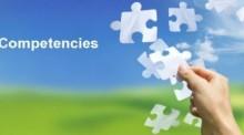 Năng lực chuyên môn và tổ chức điều hành